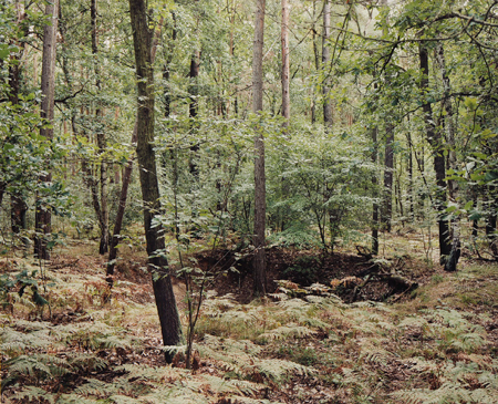 #1 (Stolpe-Süd), 2008, C-type print. 24 x 29.1 inches Edition of 3 + 1 AP