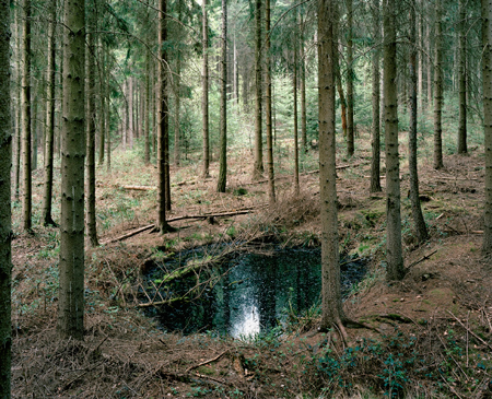 #41 Rotterbach und Hacksiefen), 2010, C-type print. 18.2 x 22 inches Edition of 4 + 1 AP