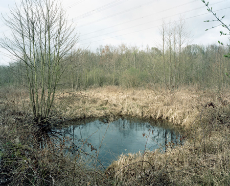 #83 (Beerenbruch), 2012, C-type print. 18.2 x 22 inches  Edition of 4 + 1 AP