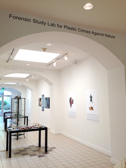 Forensic Study Lab for Plastic Crimes Against Nature