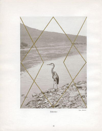 Fischreiher, 2009, Gold leaf on book page, 10 x 7.75 inches. Courtesy Sies+Höke Düsseldorf.