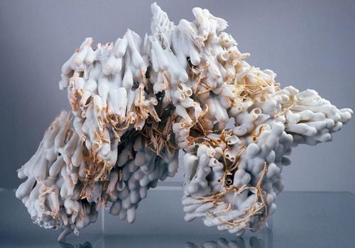 Porcelain Skins (series), 2006, Porcelain, Q-tips, 7 x 5 x 4 inches. Courtesy the artist.